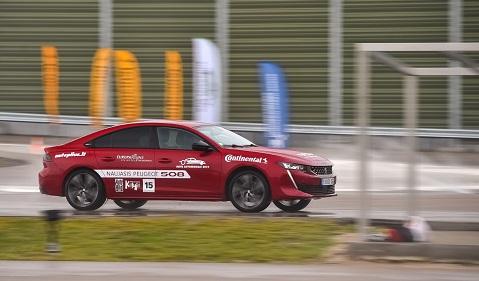 Peugeot 508 (Vytauto Pilkausko nuotrauka) (2)