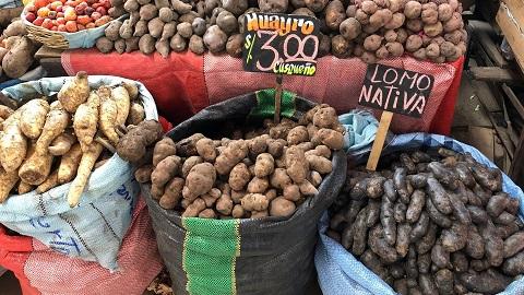 bulvės - GF nuotr.